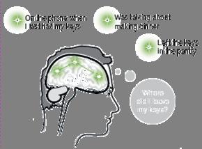 Die AQL-Technologie nutzt ähnliche Verknüpfungs- prozesse wie der menschliche Denkprozess